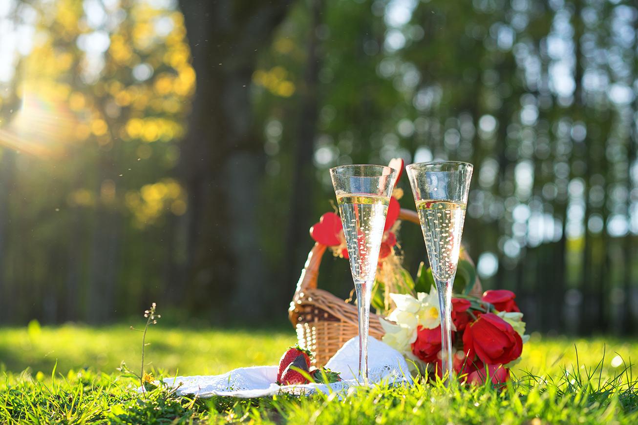 Champagne Reception Image